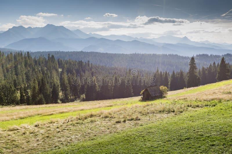 Vista delle montagne di Tatra dalla traccia di escursione poland europa fotografie stock libere da diritti