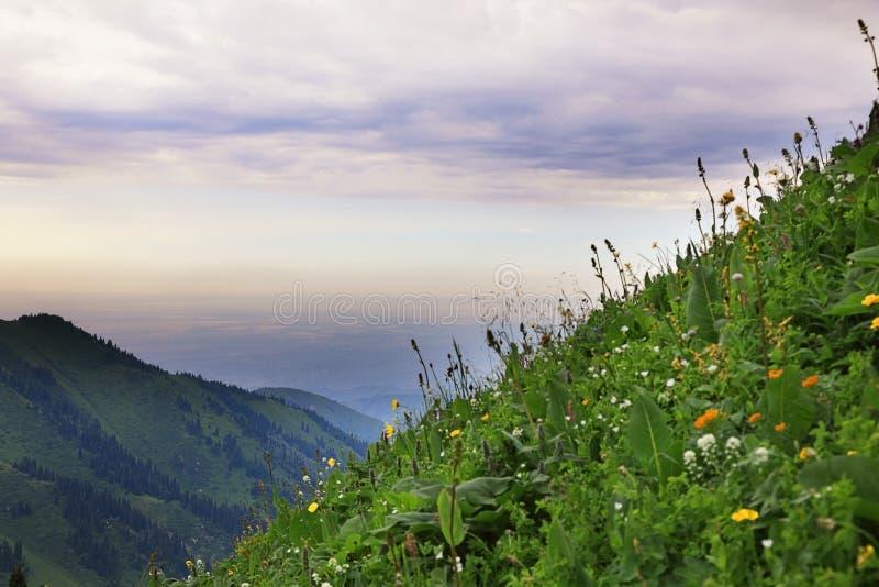 Vista delle montagne di Tian Shan, il Kazakistan fotografie stock libere da diritti