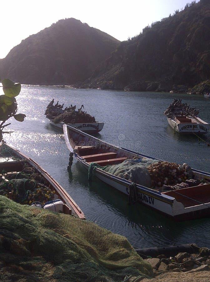Vista delle piccole barche dei marinai con le reti di pesta e dei pellicani che aspettano pesce su Margarita Island Venezuela fotografie stock