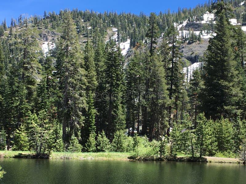 Vista dello stagno della montagna fotografie stock libere da diritti
