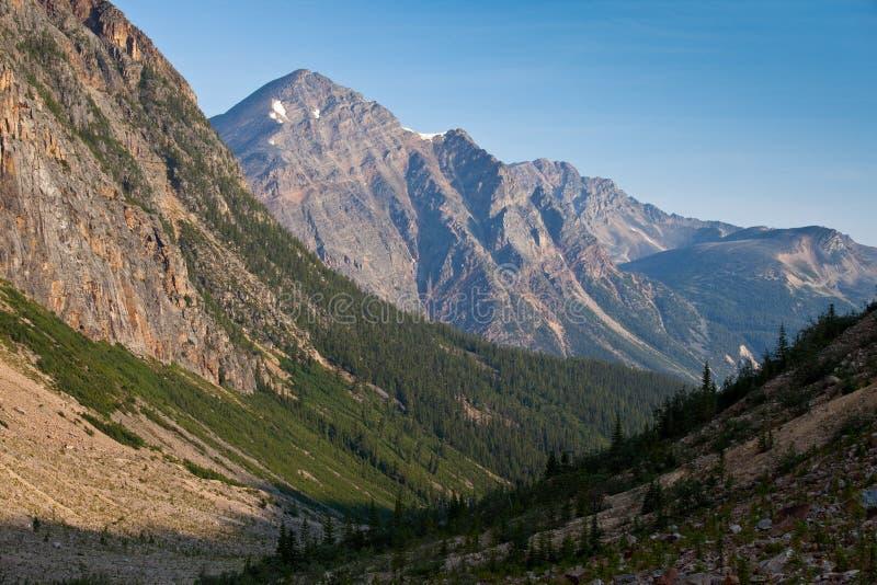 Vista dentro a um vale da montanha em Jasper National Park, Alberta imagem de stock