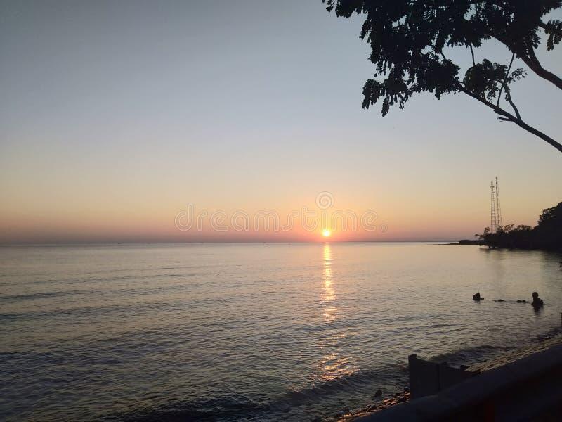 Vista di alba nella spiaggia con una siluetta dell'albero immagini stock