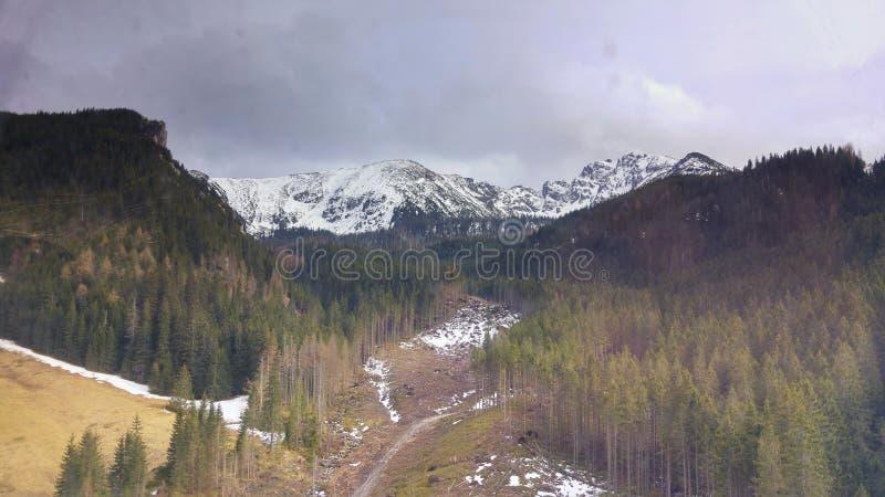 Vista di alte montagne di Tatras immagine stock libera da diritti