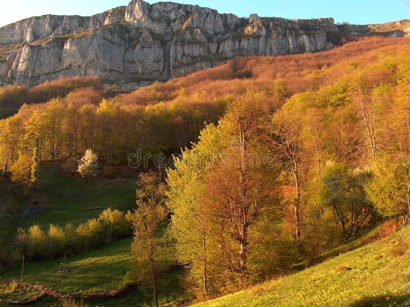 Vista di autunno immagine stock