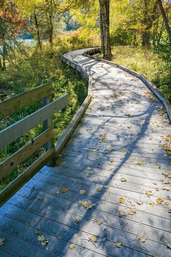 Vista di autunno del sentiero costiero e delle ombre del lago Abbott immagine stock libera da diritti