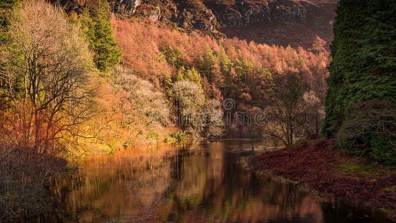 Vista di autunno dello slancio del fiume fotografia stock libera da diritti