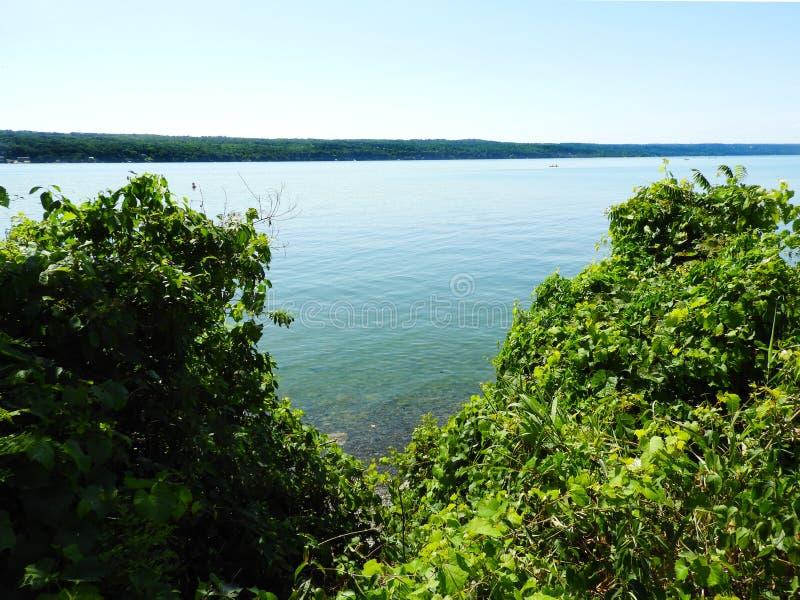 Vista di bluff da area di parcheggio al punto del sale sul lago cayuga fotografia stock libera da diritti