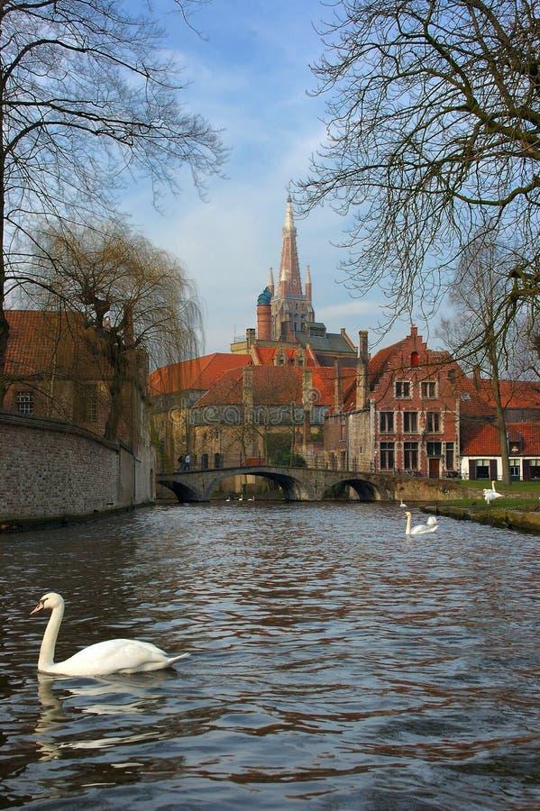 Vista di Bruges, Bruges dal canale. fotografie stock libere da diritti
