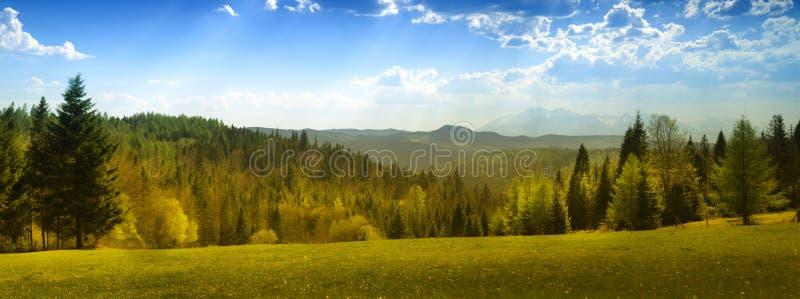 Vista di estate delle montagne di Tatra fotografia stock