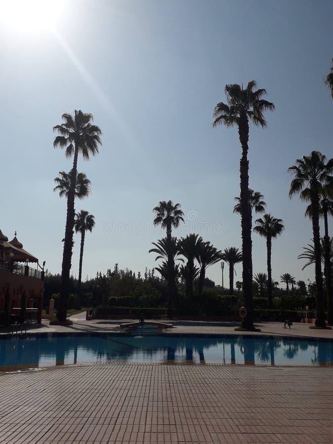 Vista di estate di Marrakesh fotografia stock