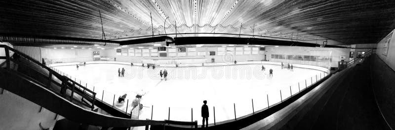 Vista di Fisheye di un hockey fotografia stock libera da diritti