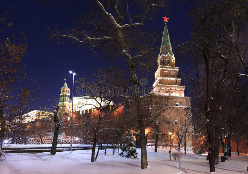 Vista di inverno del giardino e del Borovitska del Alexander fotografie stock libere da diritti