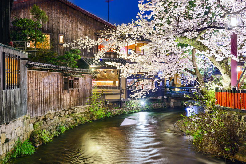 Vista di Kyoto, fiume della primavera del Giappone immagini stock