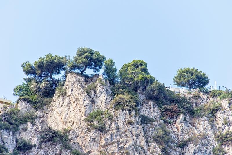 Vista di luce del giorno dal fondo per oscillare le montagne con gli alberi verdi immagini stock