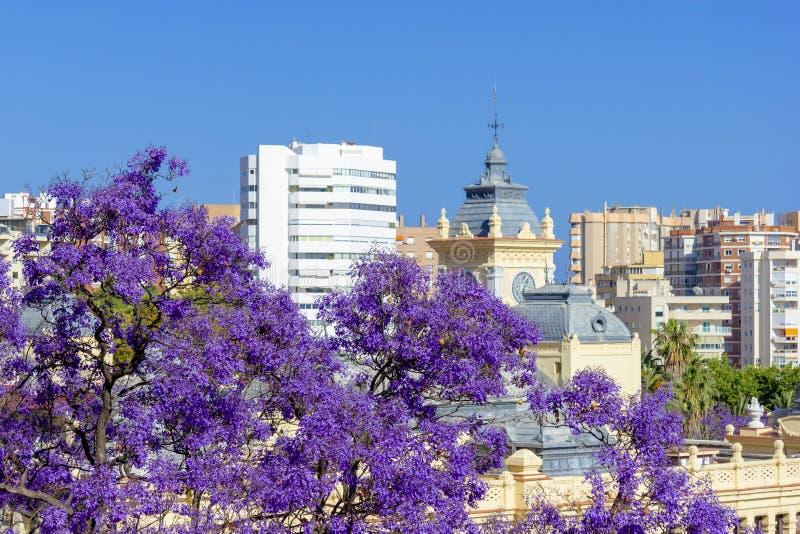 Vista di Malaga in un bello giorno di molla, Spagna immagine stock