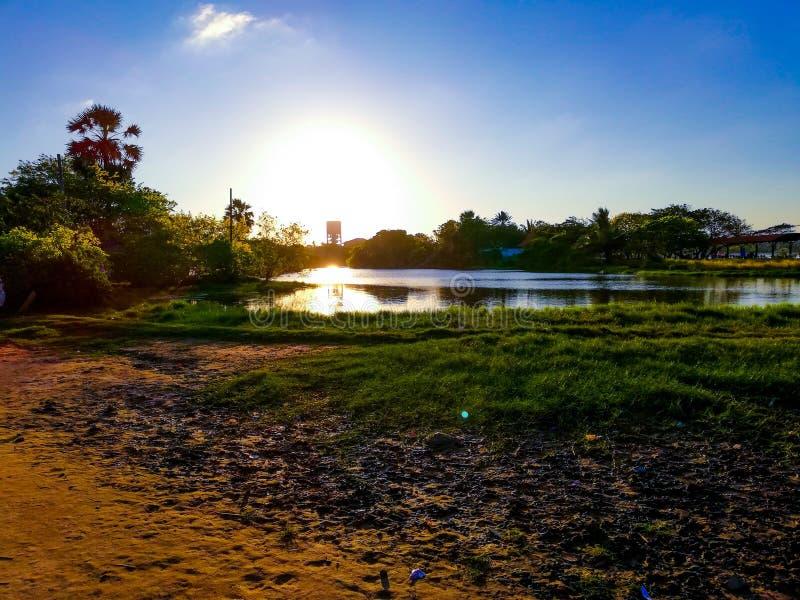 Vista di mattina sulla riva del lago fotografia stock libera da diritti