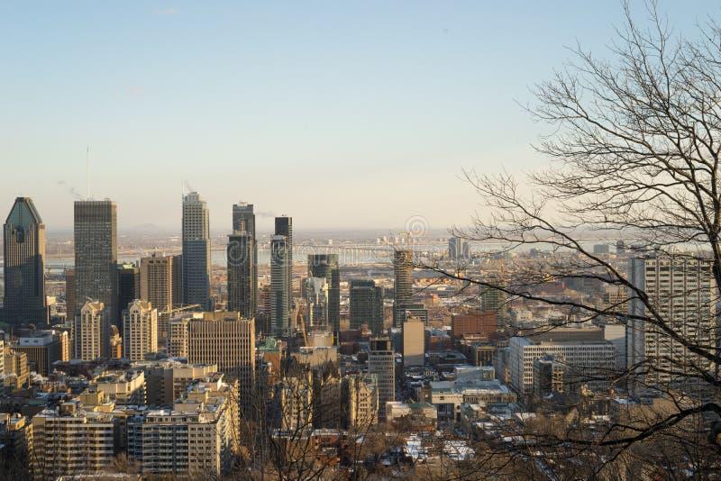 Vista di Montreal dal Mont-reale immagini stock libere da diritti