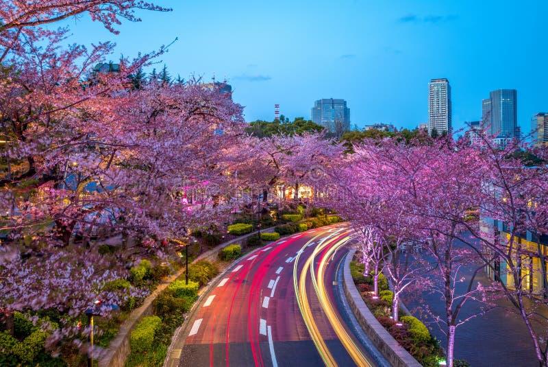 Vista di notte del Midtown di Tokyo in roppongi, Giappone fotografia stock