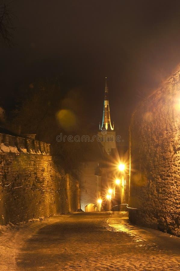 Vista di notte sulla vecchia via della città della città a Tallinn, Estonia fotografia stock libera da diritti