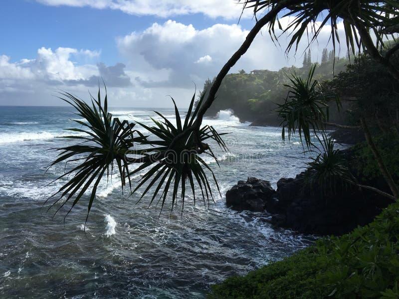 Vista di oceano di Kauai Hawai fotografia stock