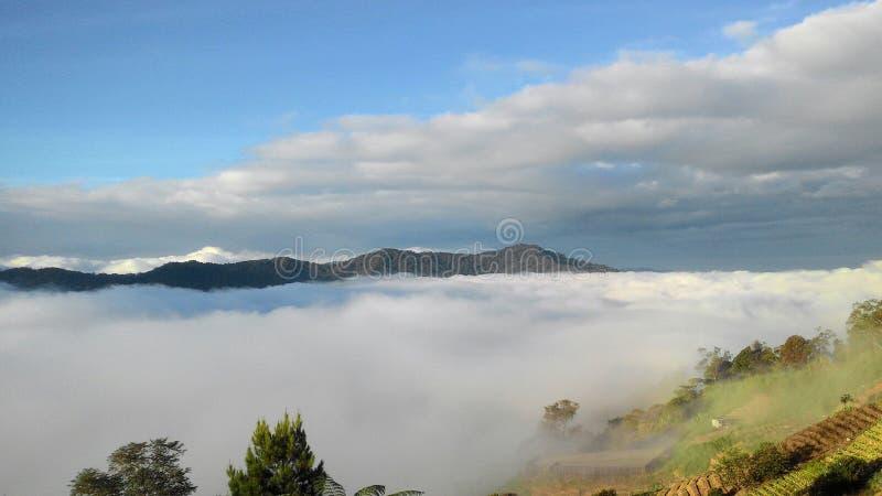 Vista di paesaggio del paesaggio della montagna Kinabalu immagine stock