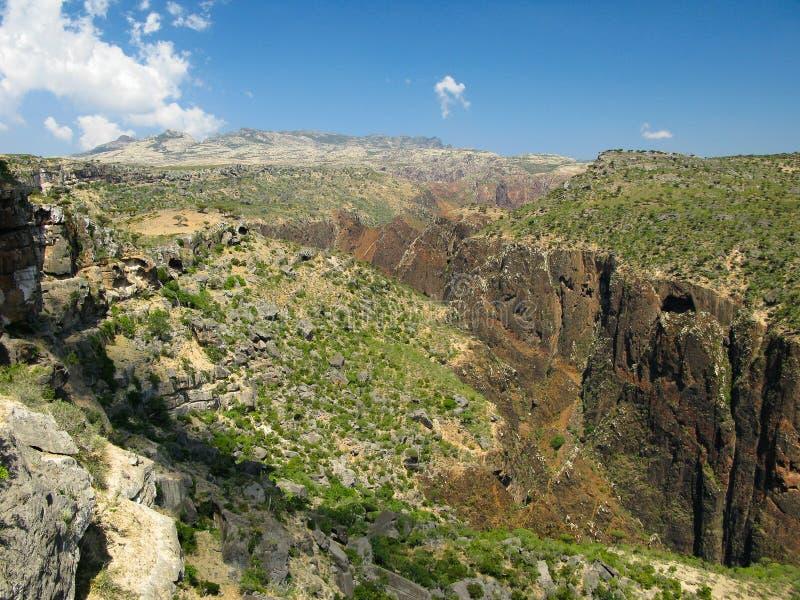 Vista di panorama al plateau Dixam ed alla gola Wadi Dirhur, isola di socotra, Yemen fotografia stock libera da diritti