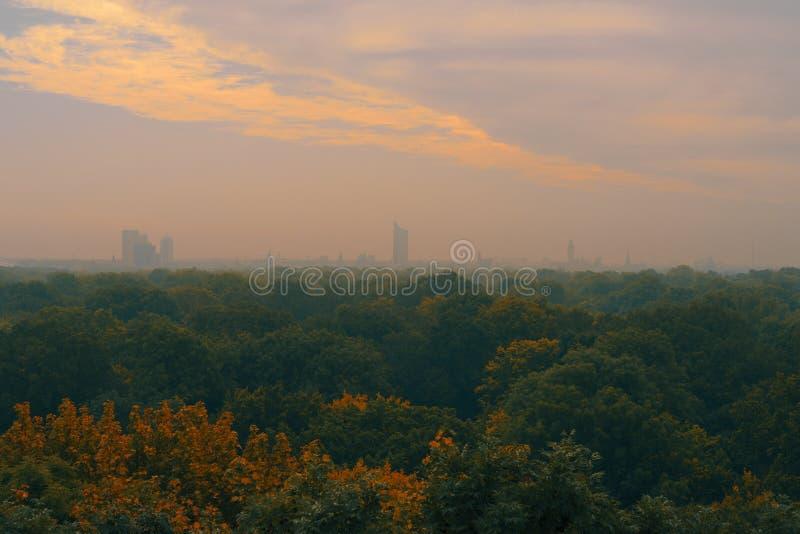 Vista di panorama all'orizzonte di Lipsia Nel lotto della priorità alta degli alberi fotografie stock libere da diritti
