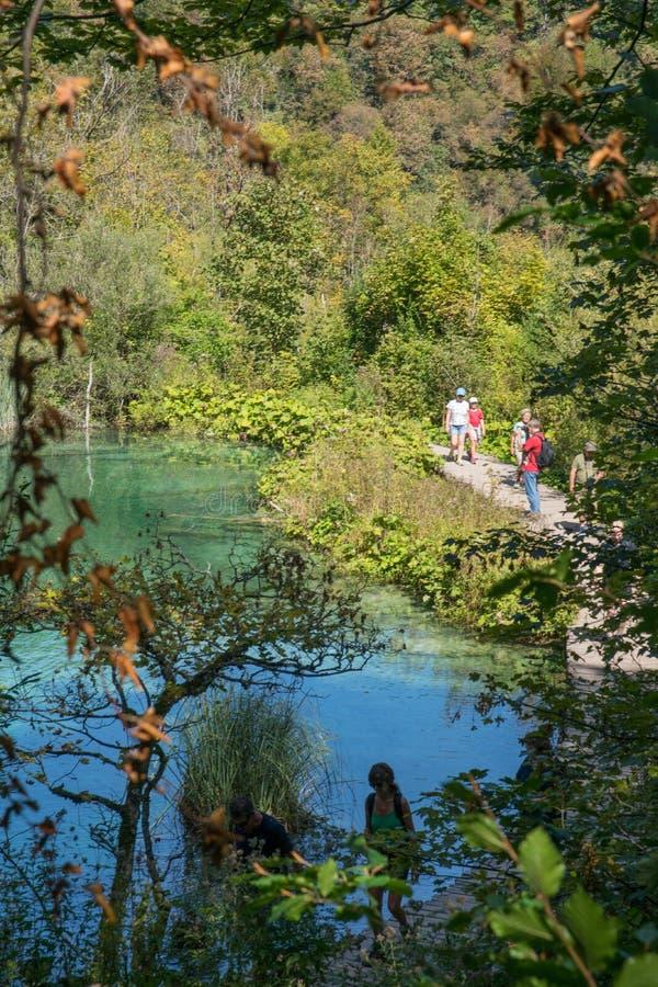 Vista di piccolo lago al parco nazionale di plitvice in Croazia fotografie stock libere da diritti