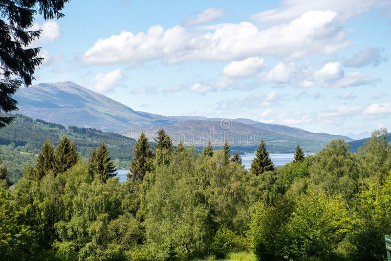 Vista di Scottish Hills with Trees immagini stock libere da diritti