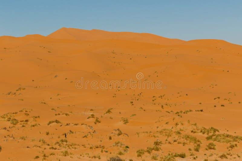 Vista di stupore di grandi dune di sabbia in Sahara Desert, ERG Chebbi, Merzouga, Marocco immagine stock