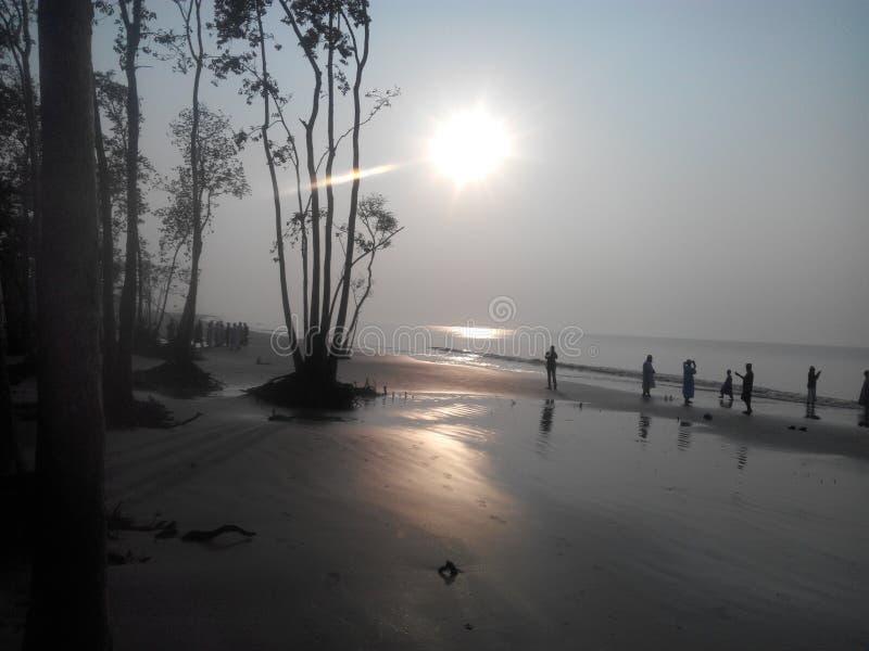 Vista di Sundorban, Khulna, Bangladesh fotografia stock