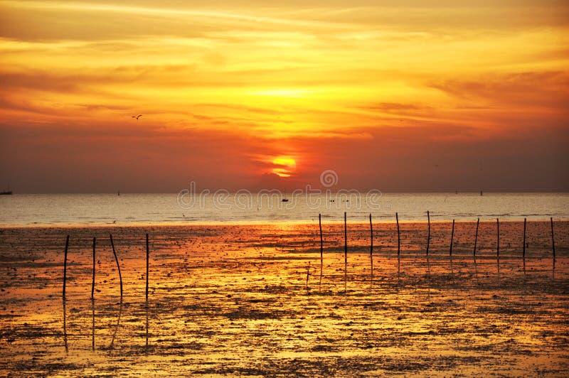 Vista di tramonto dalla costa di mare immagine stock