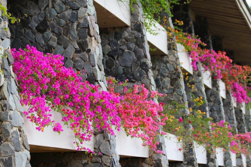Vista di un hotel su un'isola delle Figi fotografie stock