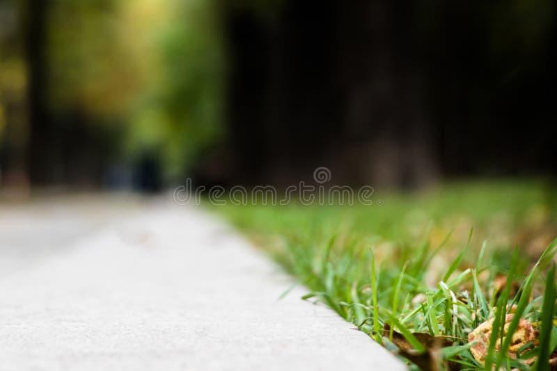 Vista di un marciapiede vago, vista del primo piano dal livello del bordo immagine stock libera da diritti