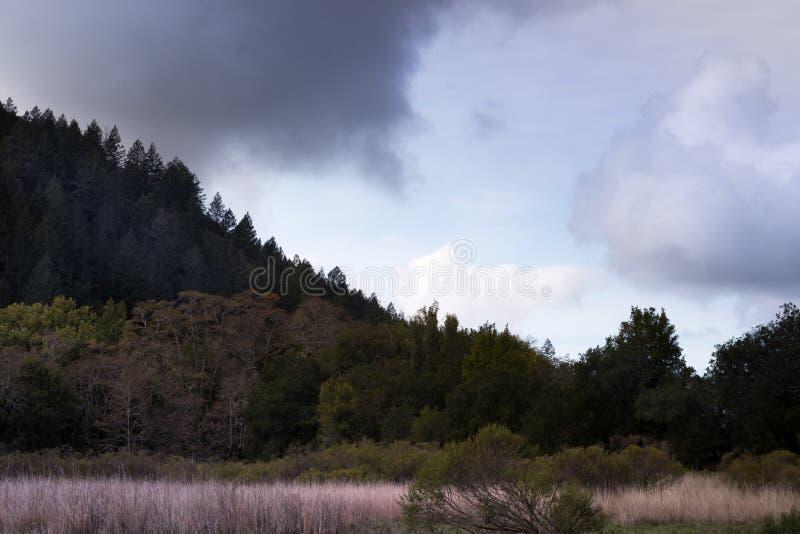 Vista di una catena montuosa con cielo nuvoloso da una pista di escursionismo nel Parco dello Stato di Sugarloaf Ridge, contea di immagine stock libera da diritti