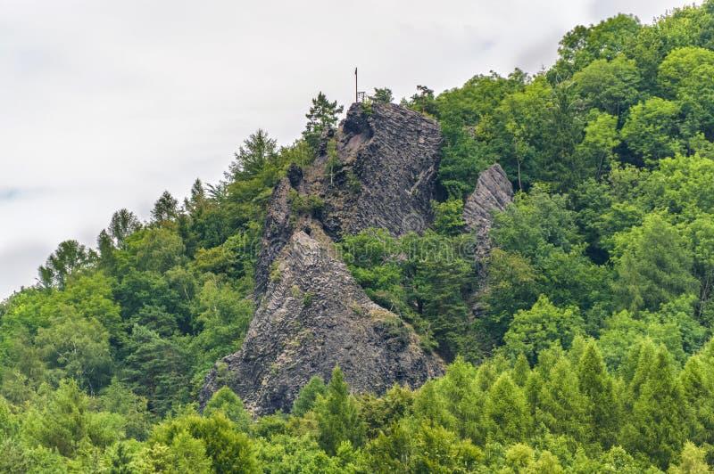 Vista di una foresta collinosa e verde fotografia stock libera da diritti