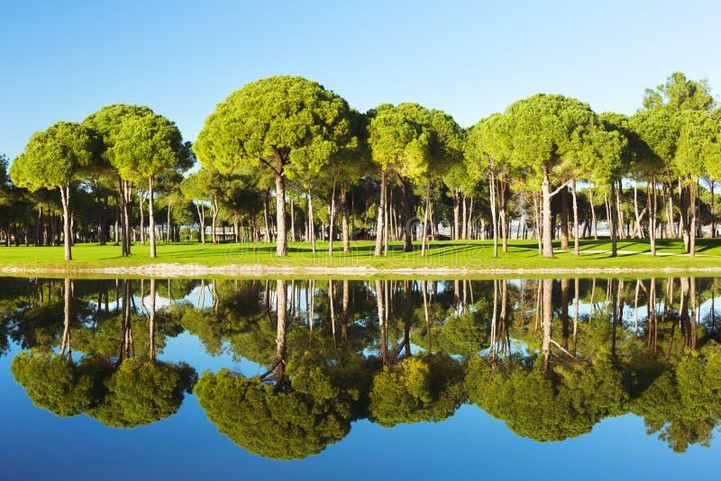 Vista di uno stagno ad un campo da golf immagini stock libere da diritti