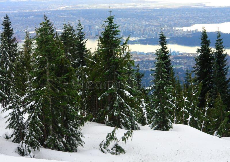 Vista di Vancouver fotografia stock