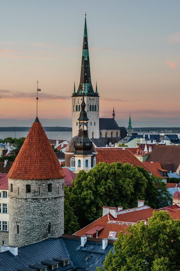 Vista di vecchia Tallinn L'Estonia immagine stock
