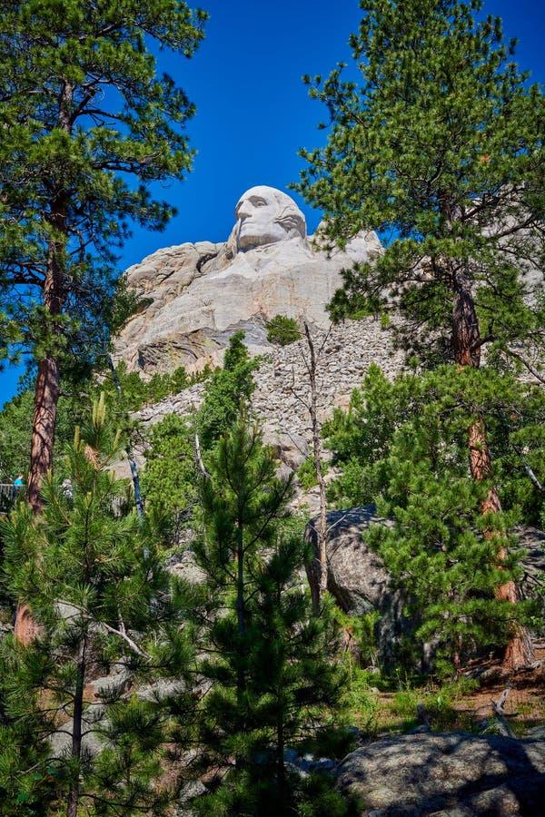 Vista di Washington attraverso gli alberi immagini stock libere da diritti