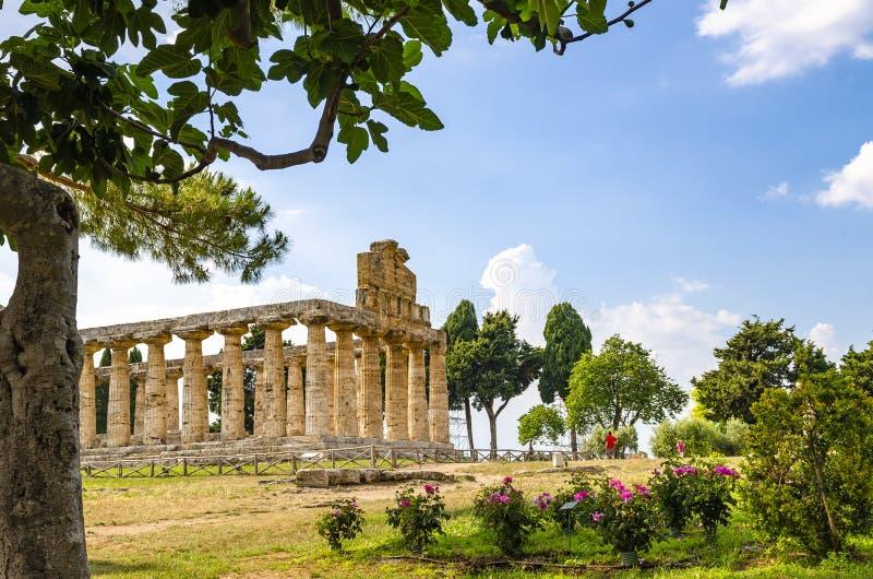 Vista dianteira do templo de Athena em Paestum foto de stock royalty free