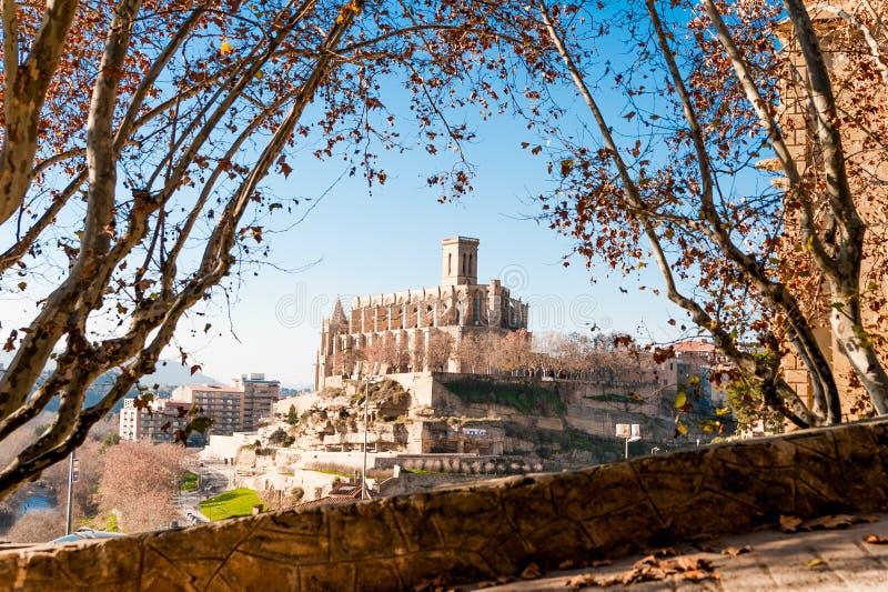 Vista diferente e original da basílica escolar de Santa Maria Seu na cidade de Manresa na região do catalunya na Espanha, com árv imagem de stock royalty free