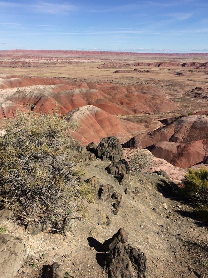Vista dipinta di mattina del deserto immagine stock libera da diritti