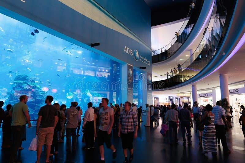 Vista do aquário de Dubai dentro da alameda de Dubai fotografia de stock