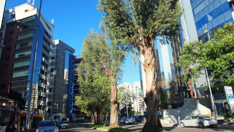 Vista do Avenida República de El Salvador no norte da cidade de Quito fotos de stock royalty free