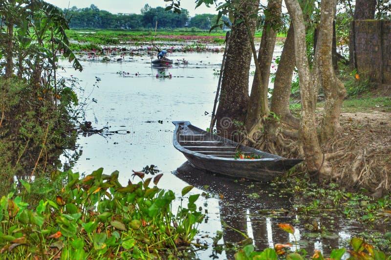 Vista do barco de rio foto de stock royalty free
