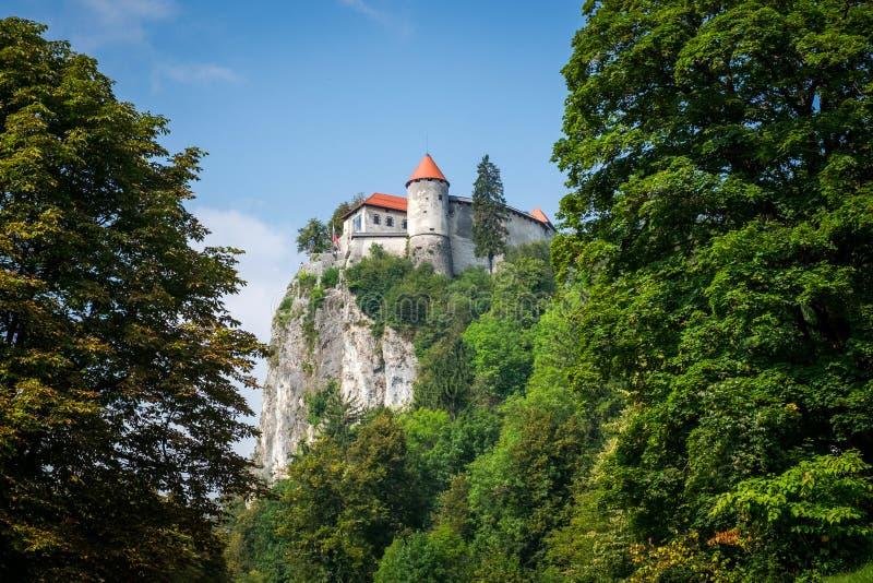 Vista do Castelo de Bled, Eslovênia fotografia de stock royalty free