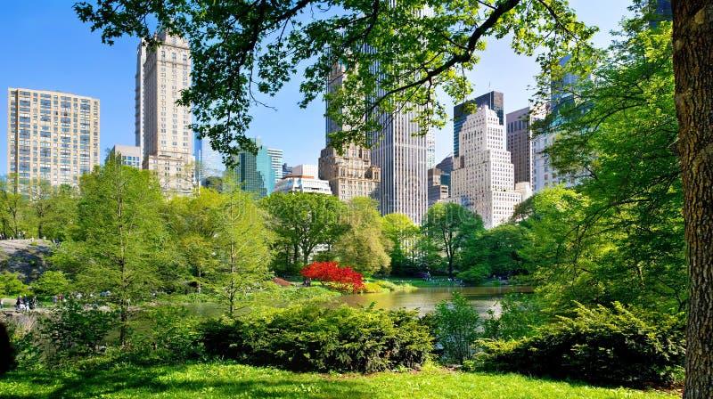 Vista do Central Park, Manhattan, NYC imagem de stock royalty free
