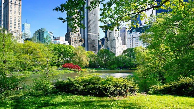 Vista do Central Park, Manhattan, NYC fotografia de stock royalty free