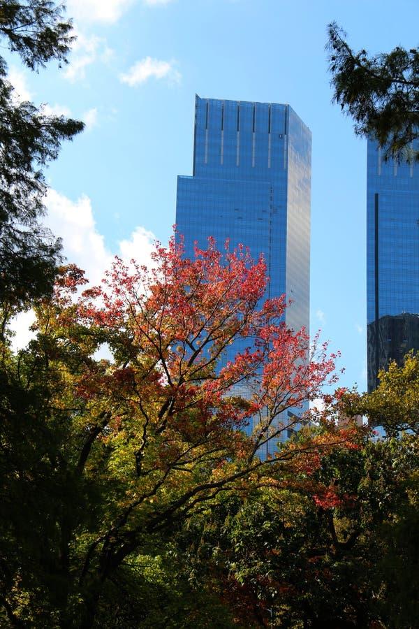 Vista do Central Park, NY imagem de stock royalty free